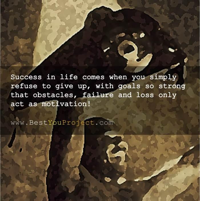 SuccessPersistence